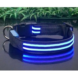 Collar luminoso 2 linea - Talla S